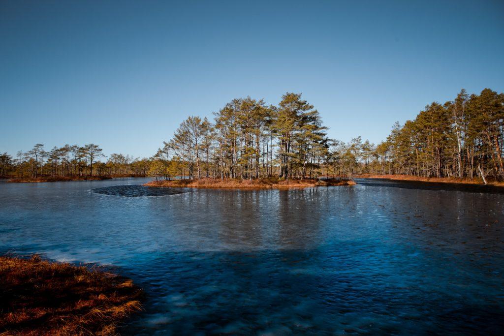Purva ezers